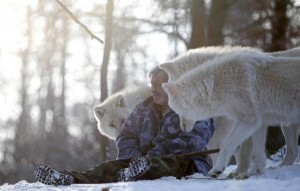 Living With Wolves (30 photos) 2