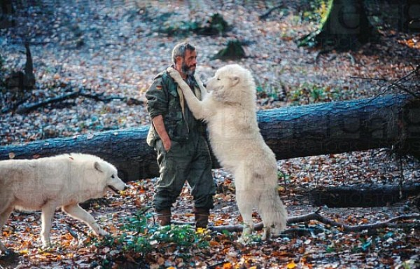 2327 Living With Wolves (30 photos)