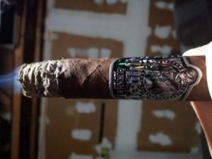 Premium Cigars (31 photos) 24