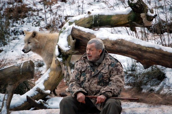 2525 Living With Wolves (30 photos)