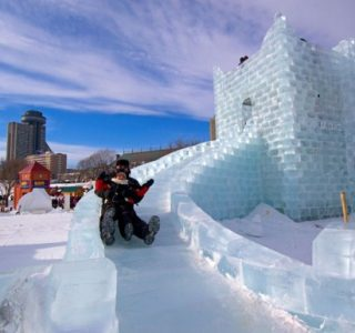 Impressive Ice Sculptures (30 photos)