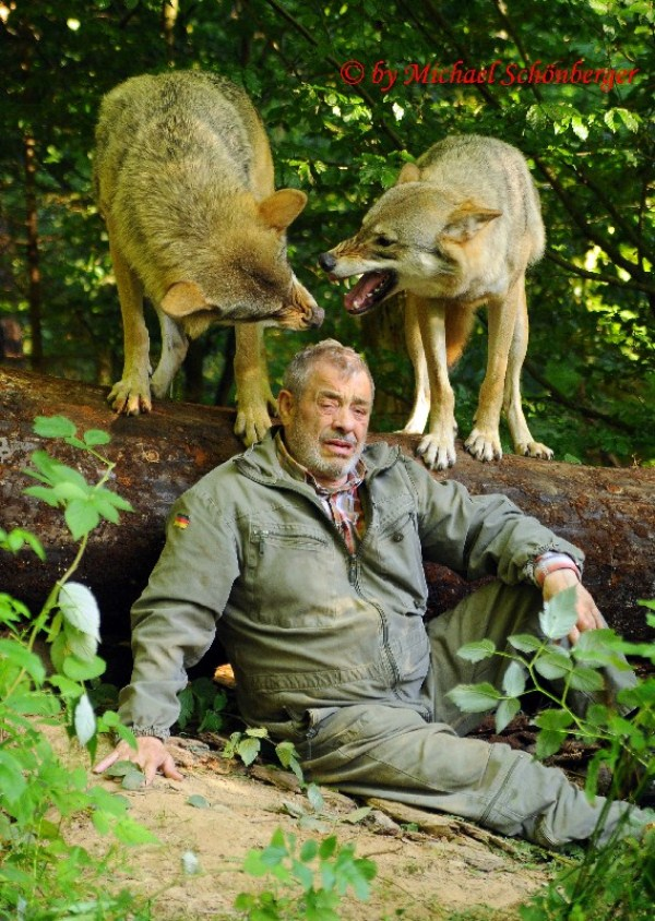 3016 Living With Wolves (30 photos)