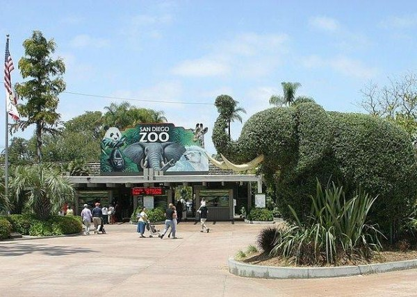 334 Worlds Largest Zoos (8 photos)