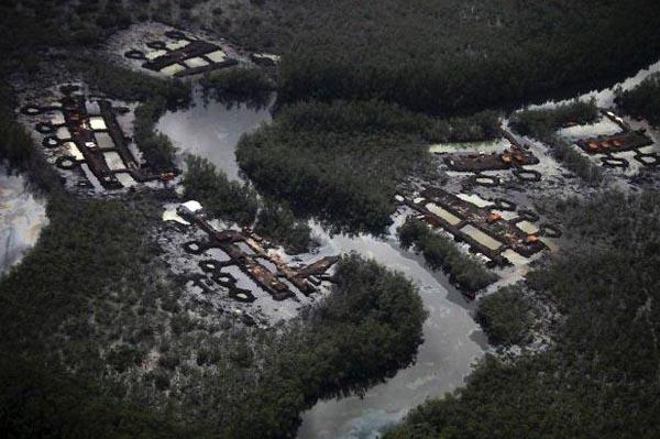 344 Oil Thieves in Nigeria (30 photos)