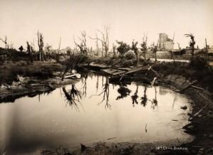 Devastating Effects of WWI (15 photos) 12