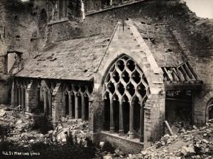 Devastating Effects of WWI (15 photos) 14