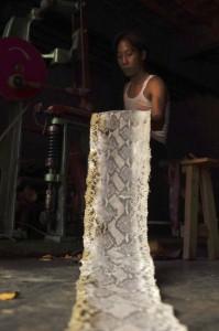 Production of Snakeskin Handbags (22 photos) 19