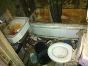 Extremly Filthy House (35 photos) 21