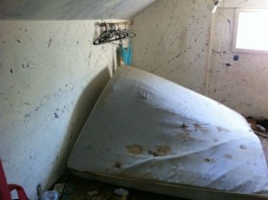 Extremly Filthy House (35 photos) 28