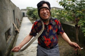 Snake Town in China (18 photos) 6