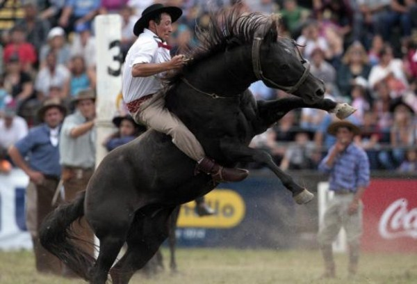 1234 της Νότιας Αμερικής Cowboys (15 φωτογραφίες)