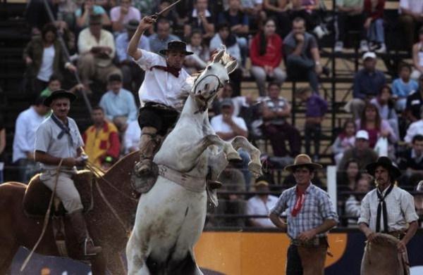 1332 της Νότιας Αμερικής Cowboys (15 φωτογραφίες)