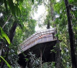 Finca Bellavista - a Treehouse Community (21 photos) 15