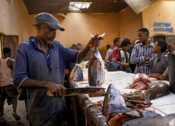 1718 Οι ψαράδες του Μογκαντίσου (33 φωτογραφίες)