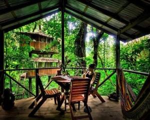 Finca Bellavista - a Treehouse Community (21 photos) 18