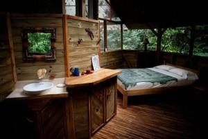 Finca Bellavista - a Treehouse Community (21 photos) 19