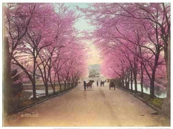 19th-Century Photos Of Tokyo (25 photos) 23