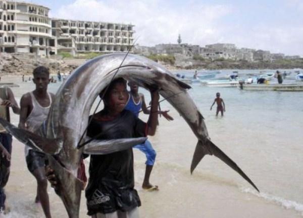 2512 Οι ψαράδες του Μογκαντίσου (33 φωτογραφίες)