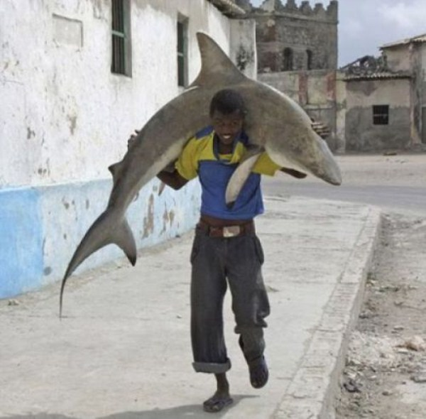 308 Οι ψαράδες του Μογκαντίσου (33 φωτογραφίες)