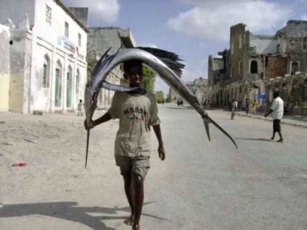 3115 Οι ψαράδες του Μογκαντίσου (33 φωτογραφίες)