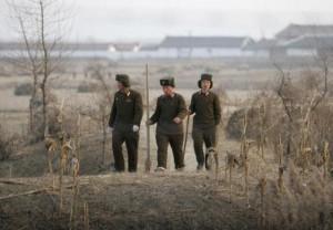 The North Korean Military (34 photos) 34