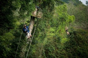 Finca Bellavista - a Treehouse Community (21 photos) 3