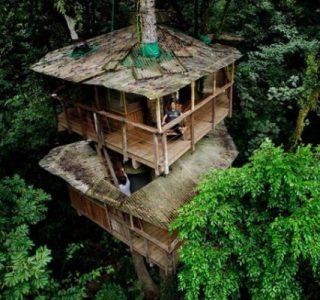 Finca Bellavista – a Treehouse Community (21 photos)