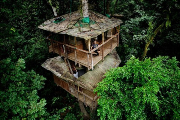 Finca Bellavista - a Treehouse Community (21 photos) 6