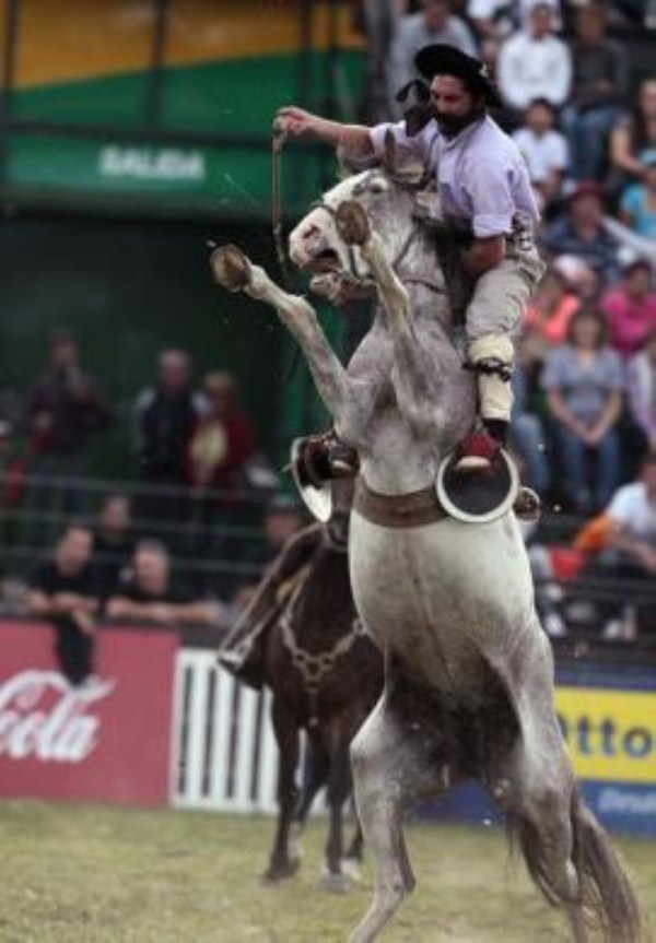 739 Νότιας Αμερικής Cowboys (15 φωτογραφίες)