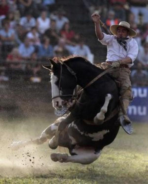 838 Νότιας Αμερικής Cowboys (15 φωτογραφίες)
