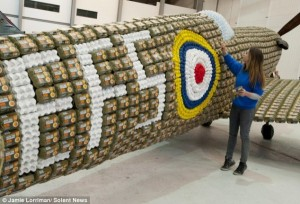 Spitfire Built From 6500 Egg Boxes (10 photos) 8