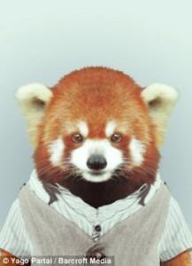 Fashion Zoo Animals (28 photos) 10