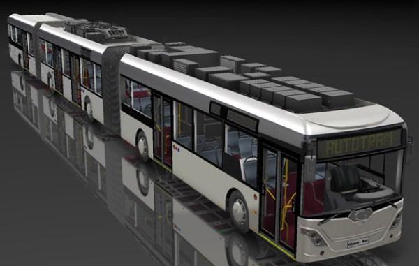 1228 World's Largest Bus (18 photos)