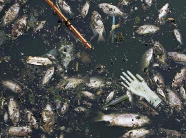 13 Ρύπανση στην Κίνα (17 φωτογραφίες)