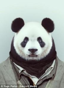 Fashion Zoo Animals (28 photos) 15