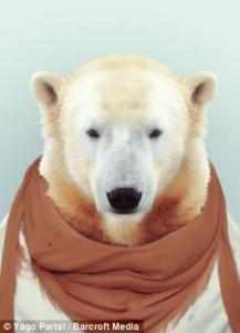 Fashion Zoo Animals (28 photos) 16