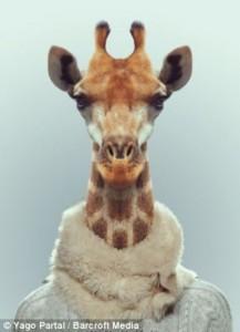 Fashion Zoo Animals (28 photos) 18