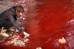 Pollution in China (17 photos) 2