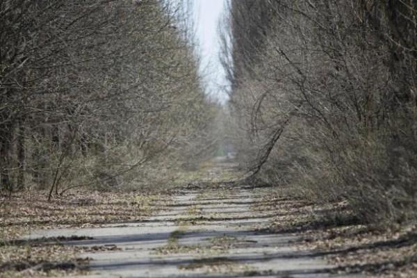 2130 Τσερνομπίλ Σήμερα (38 φωτογραφίες)