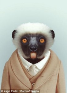 Fashion Zoo Animals (28 photos) 25