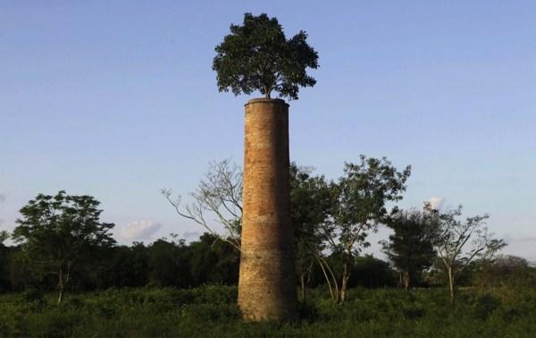 311 Os 33 Mais Belos Locais abandonado no mundo (33 fotos)