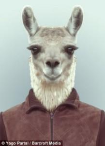 Fashion Zoo Animals (28 photos) 6