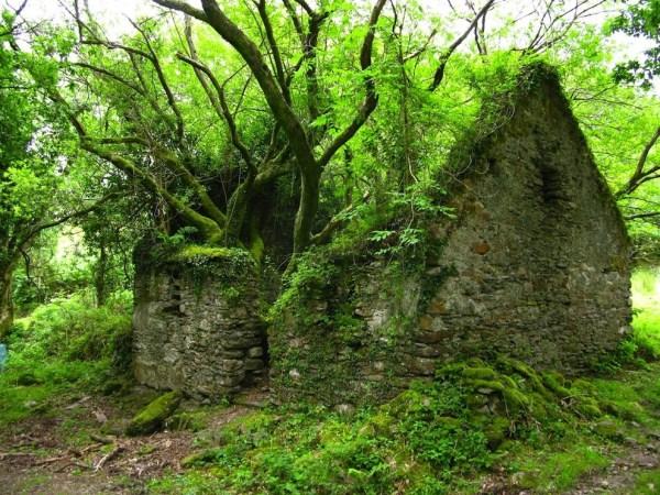 85 Os 33 mais bonitos lugares abandonado no mundo (33 fotos)