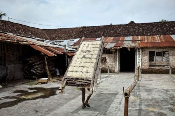 Σπαγγέτι 1828 στην Ινδονησία (18 φωτογραφίες)