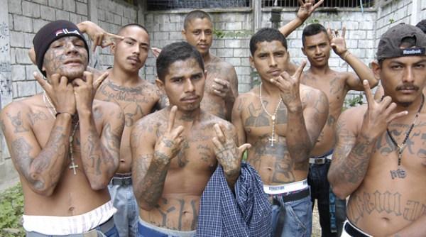 3114 The Deadly Gangs of El Salvador (40 photos)