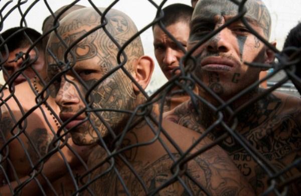 374 The Deadly Gangs of El Salvador (40 photos)