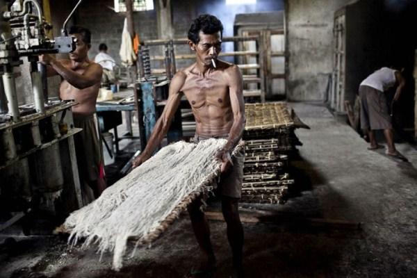 548 Σπαγγέτι στην Ινδονησία (18 φωτογραφίες)