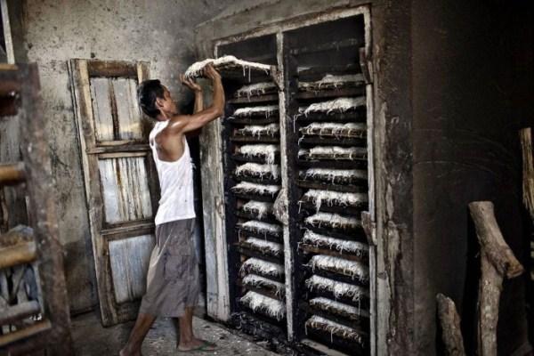 639 Spaghetti στην Ινδονησία (18 φωτογραφίες)