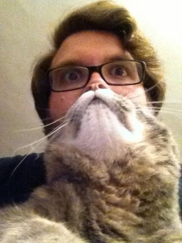 cat-beards-10