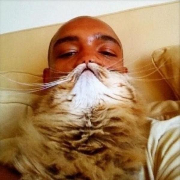 cat-beards-12